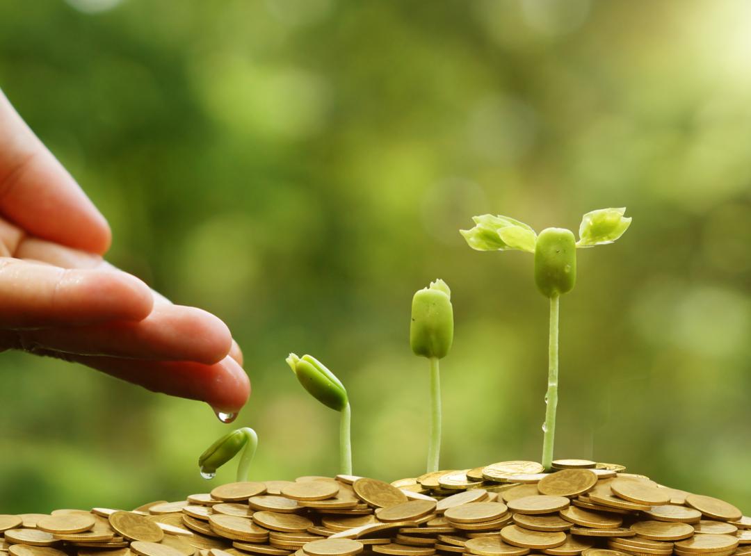 Financiele groei